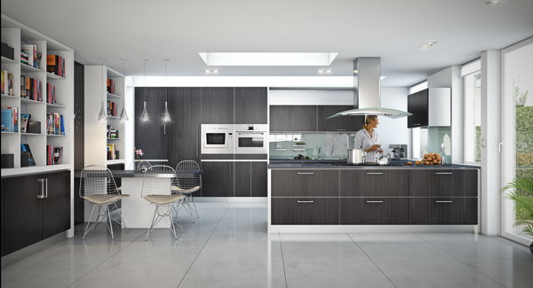 Modern Kitchen Designs 2013 : Galleries